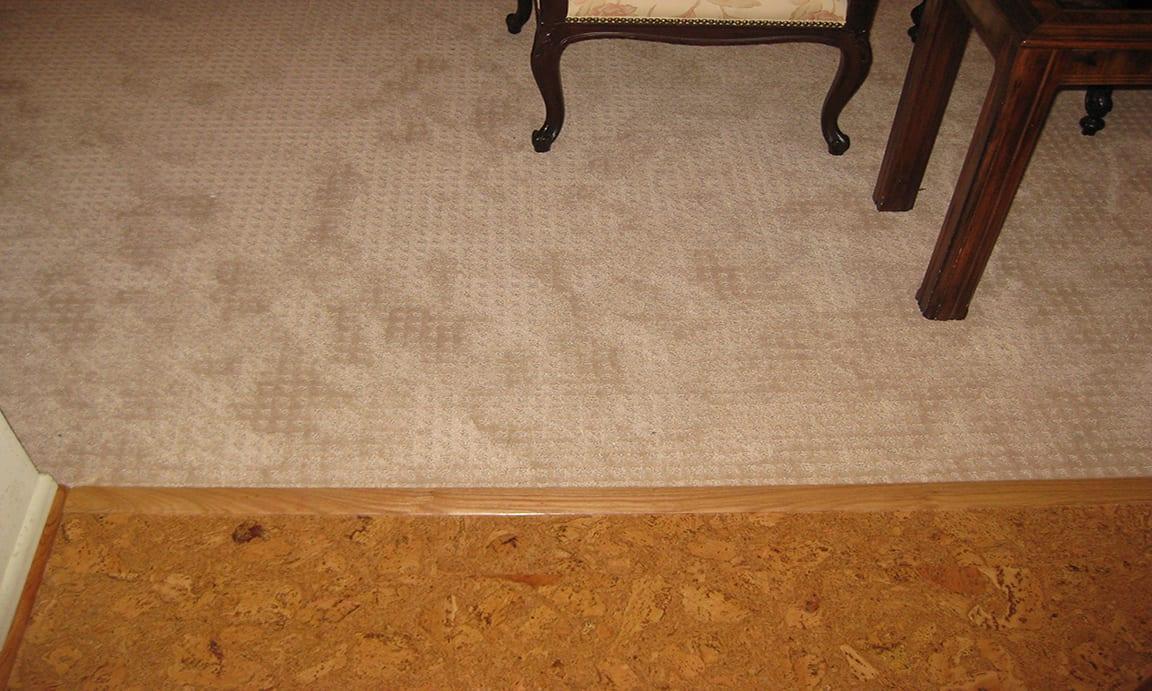 Takoma, NW Washington DC – Carpet Flooring
