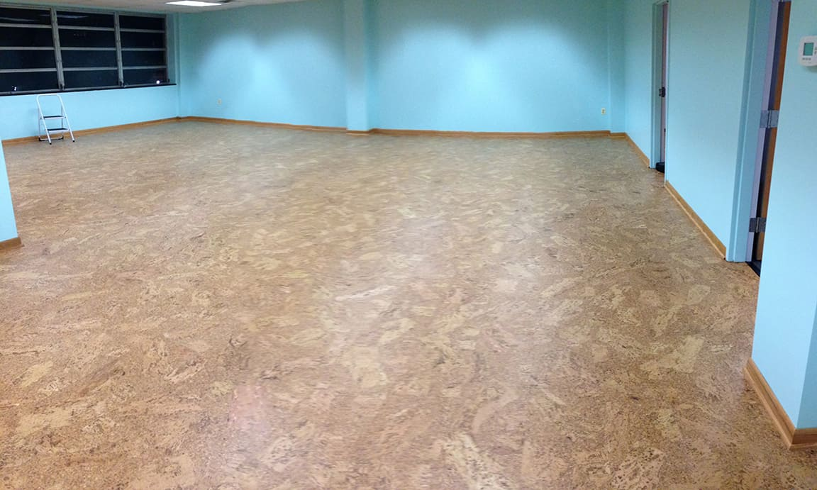 Willow Street Yoga, Silver Spring MD – Commercial